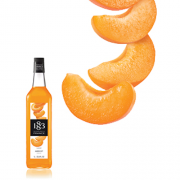 1883 Maison Routin Syrup 1.0L Apricot