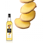 1883 Maison Routin Syrup 1.0L Ginger